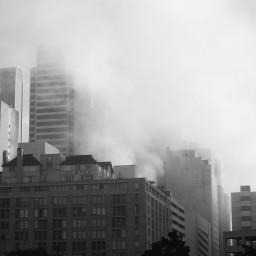 Market Street in the Fog